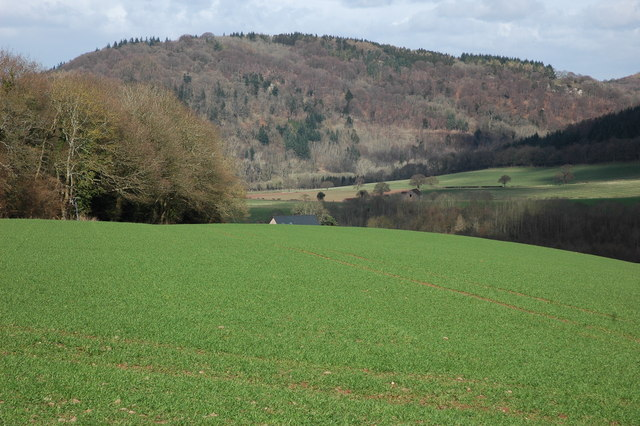 The Wye Valley near Monmouth