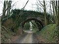 SU7036 : Bridge over dismantled railway : Week 12
