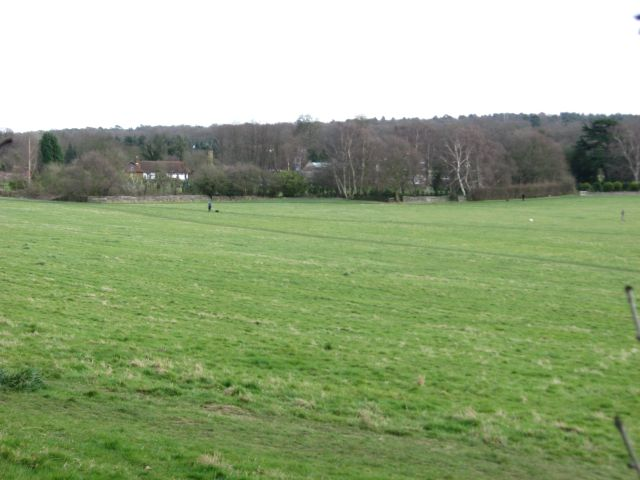 Coombe Farm and grounds