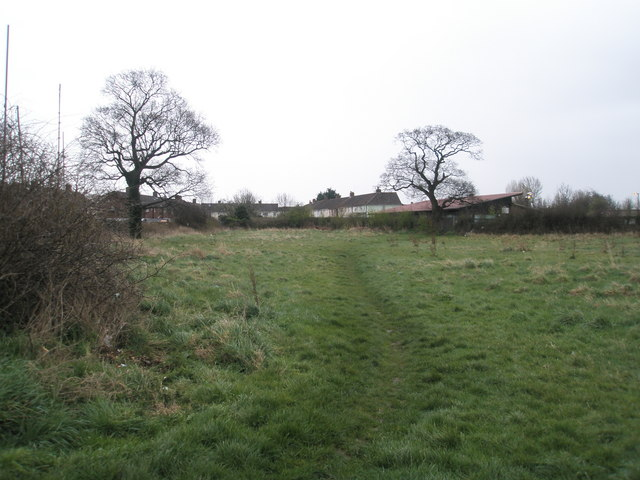 Looking eastwards at the wasteland behind Blendworth Crescent