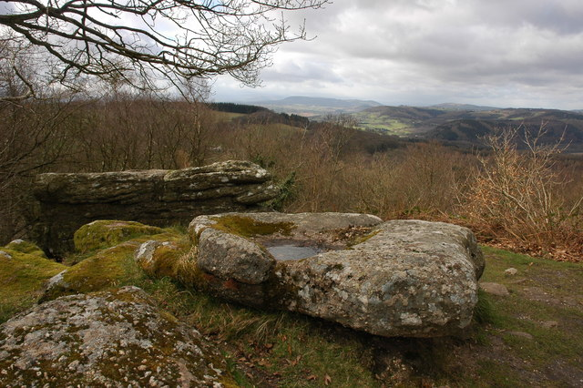 View to the west from above the Buck Stone