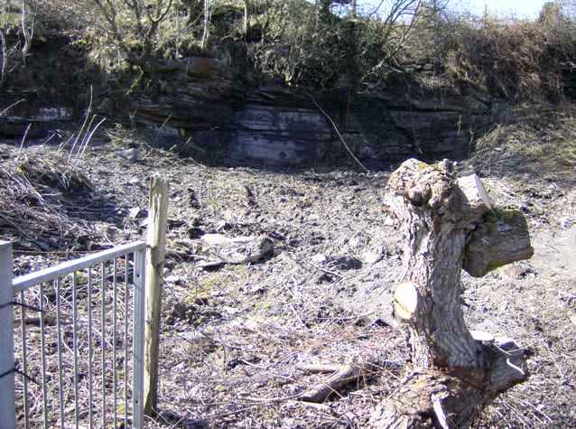 Very old quarry