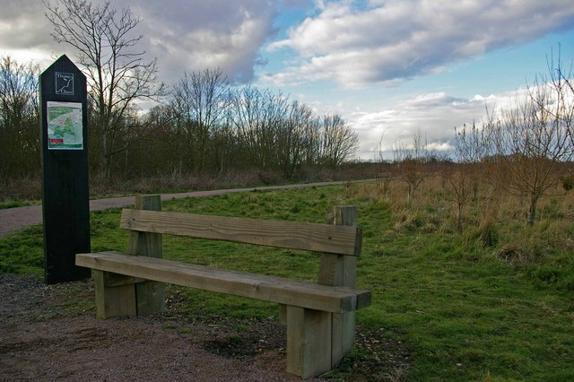 Seat in Cley Woods