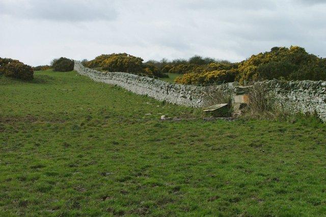 Wall, Leakin Hill