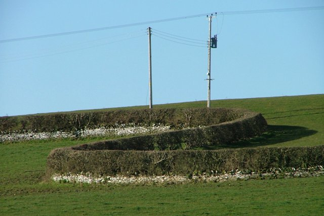 Wall and Hedge, Kilfillan Hill