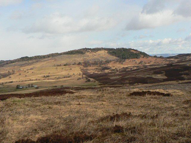 Birnam Hill from Torchuaig Hill