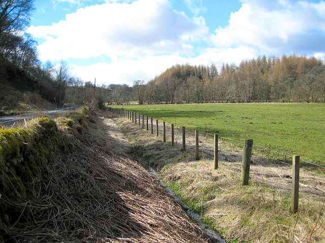 Road, ditch and pasture