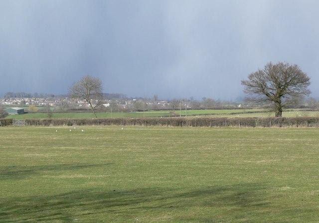 Across the Fields to Fleckney