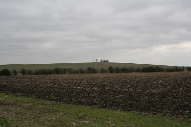 Looking at Cholsey Hill