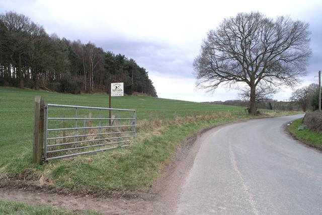 Near to Newton Hurst
