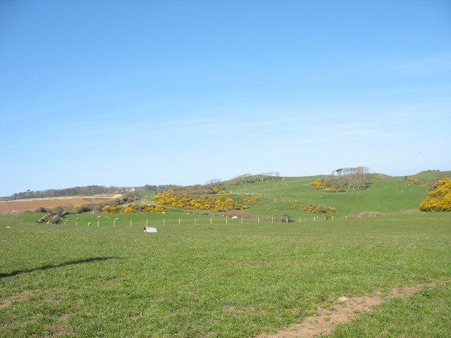 The western end of the Rhos-mynach ridge
