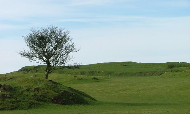 Looking up to Gallow Hill