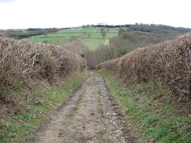 Bridleway View - Heading down to The Moss