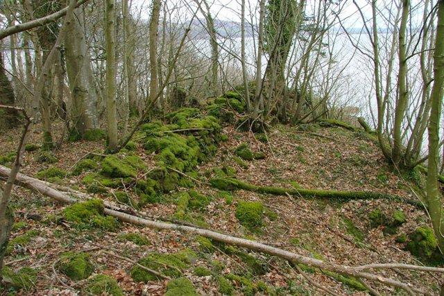 Ruined Wall, Shore Wood Belts