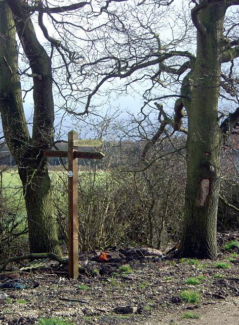 Bridleway signpost near Cuckoo Bush