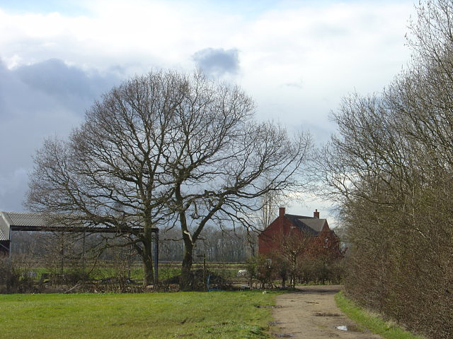 Bridleway from East Leake
