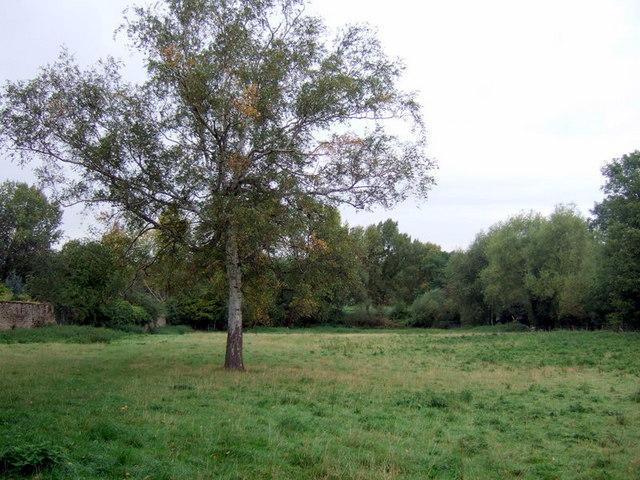 Rural Iffley