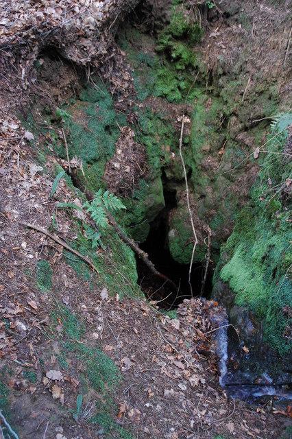 Sinkhole, Highmeadow Wood