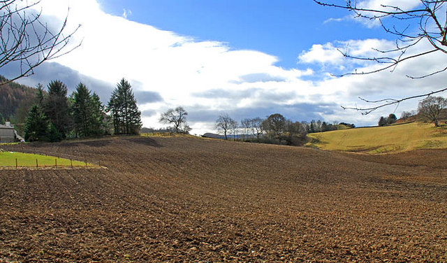 Farmland at Drummond Earnoch
