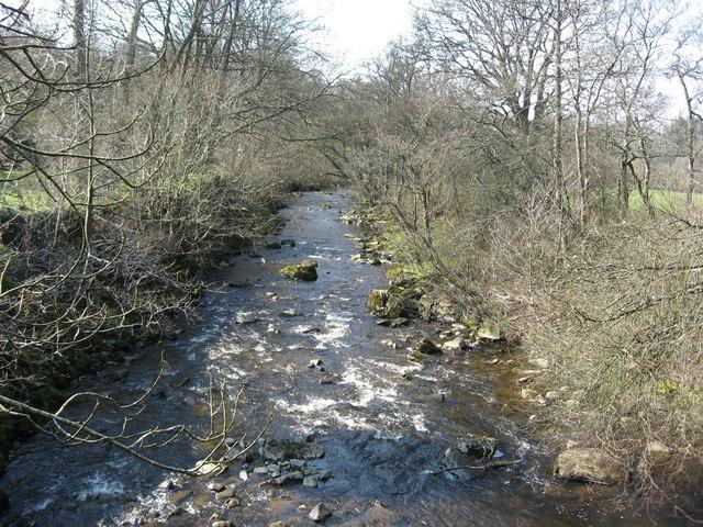 The River East Allen