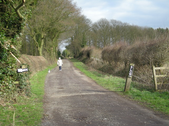 Track to some cottages