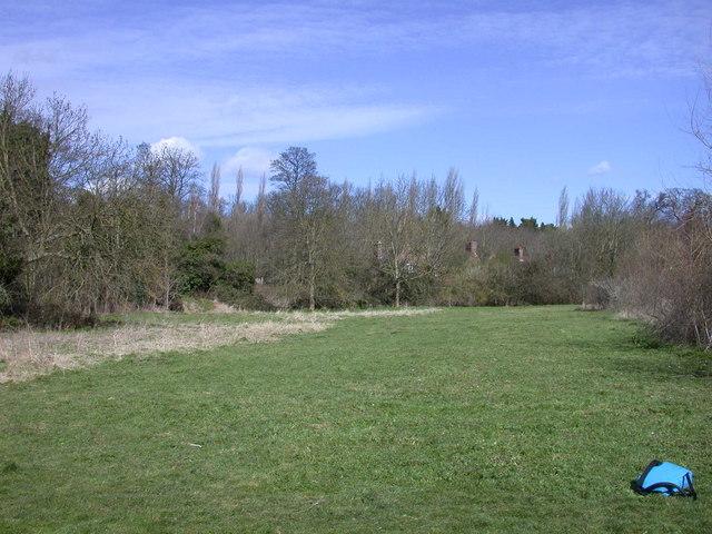 Byron's Pool LNR - grassland