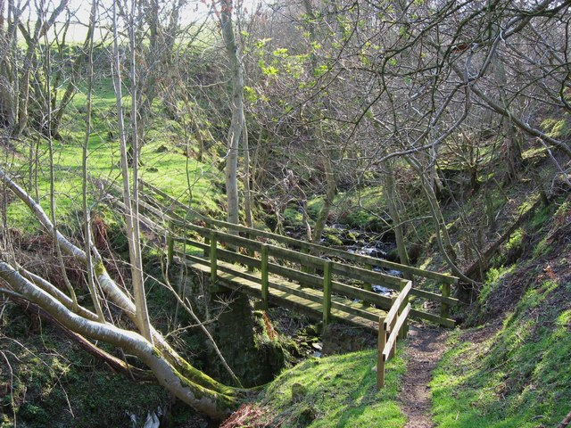 Footbridge over Newshield Burn
