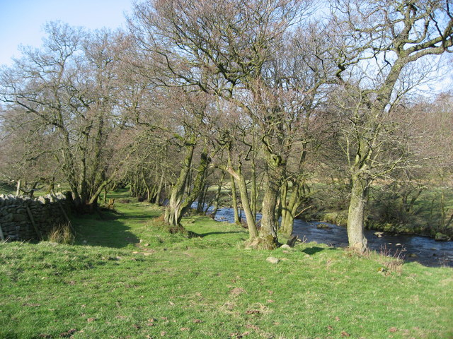 The banks of the River East Allen below The Hagg