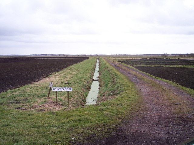 Farm Track on Plex Moss