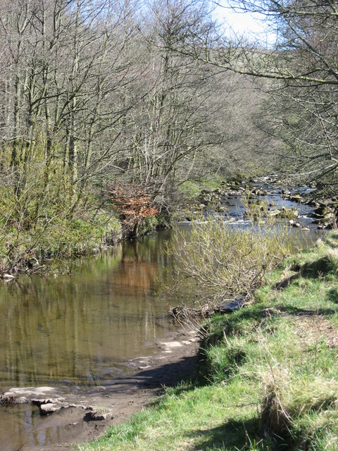 The River East Allen east of The Holms