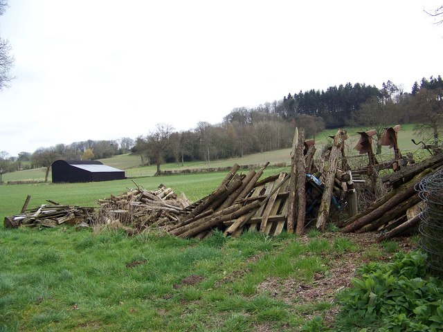 The woodpile, Sutton Mandeville Mill