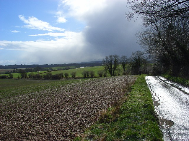 Road and farmland, Little Bedwyn