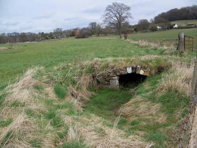 Bridge near Sutton Mandeville