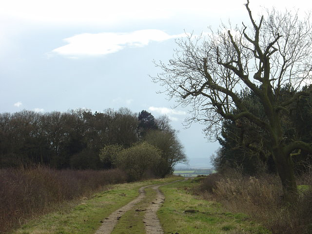Bridleway to West Leake