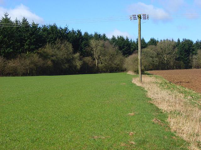 Farmland, Chisbury
