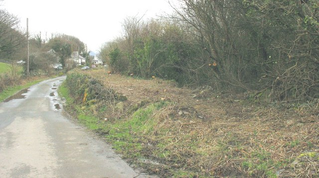 A newly cleared section of the Padarn Railway embankment near Stabla
