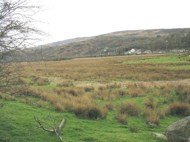 Boggy flood plain of Afon Rhythallt with the village of Cwm-y-glo in the background