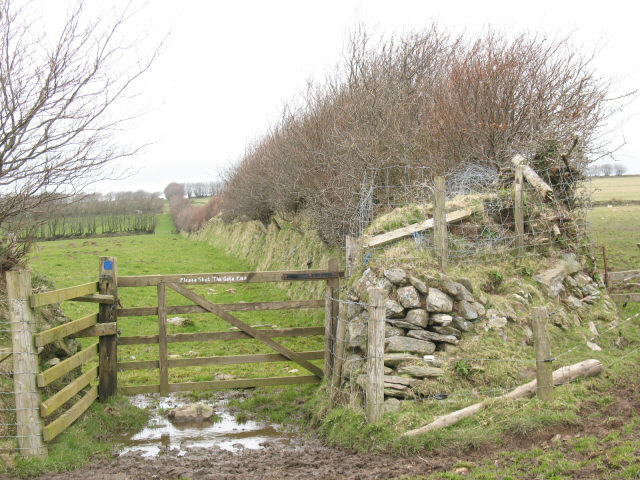 Bridleway to Parracombe