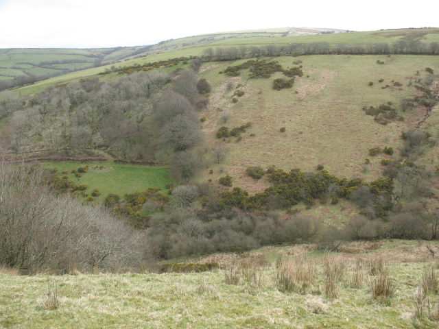Unnamed combe on Exmoor