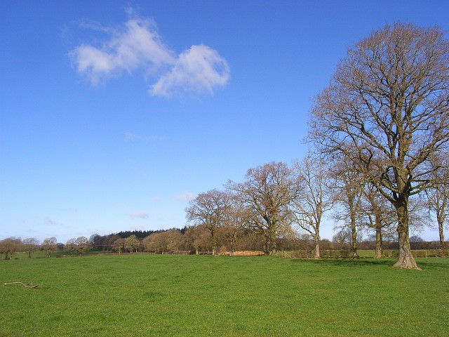 Pasture, Chisbury