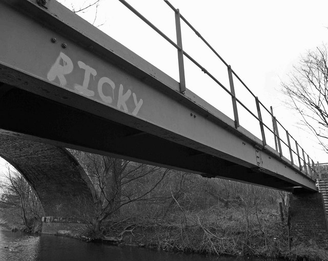 Ricky's bridge over the Huddersfield Broad Canal #1