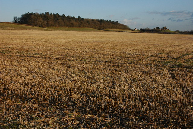 Brierley Hill, near Baughton