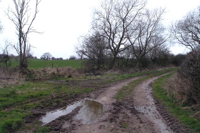 Track near Newton