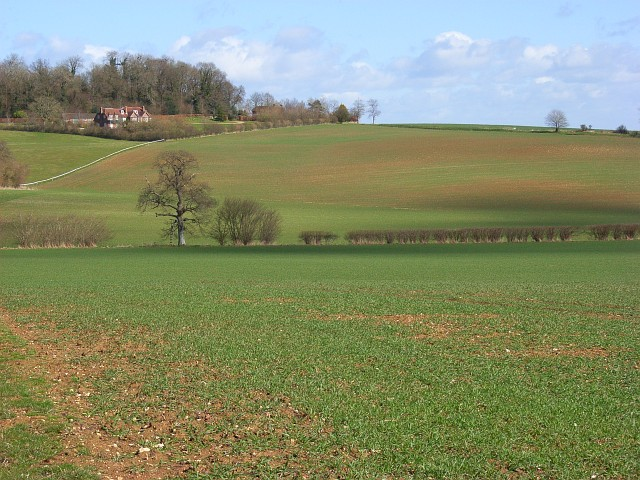 Farmland, Great Bedwyn