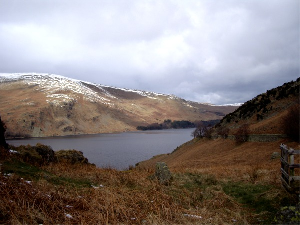 Winter vegetation above Haweswater