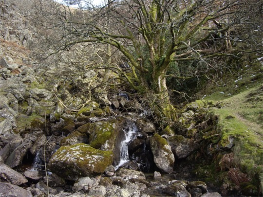 Small waterfalls emptying into Haweswater