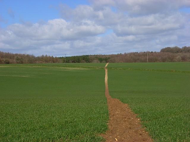 Footpath, Great Bedwyn