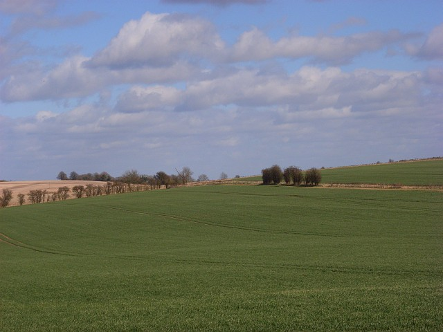 Farmland, Wilton