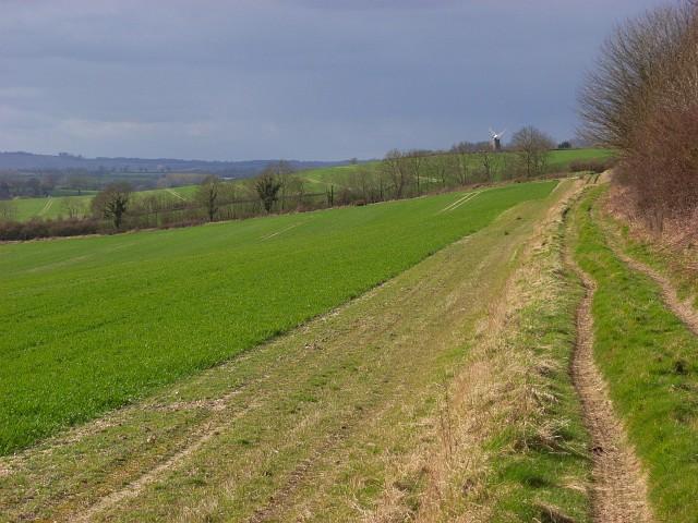 Footpath above Marten