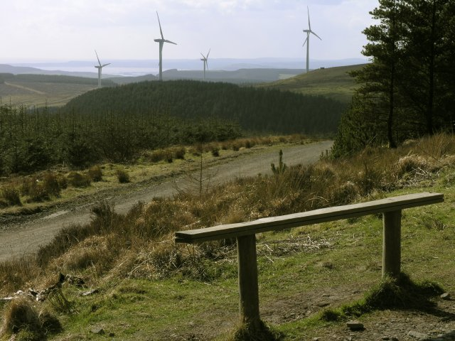 Bench overlooking a wind farm